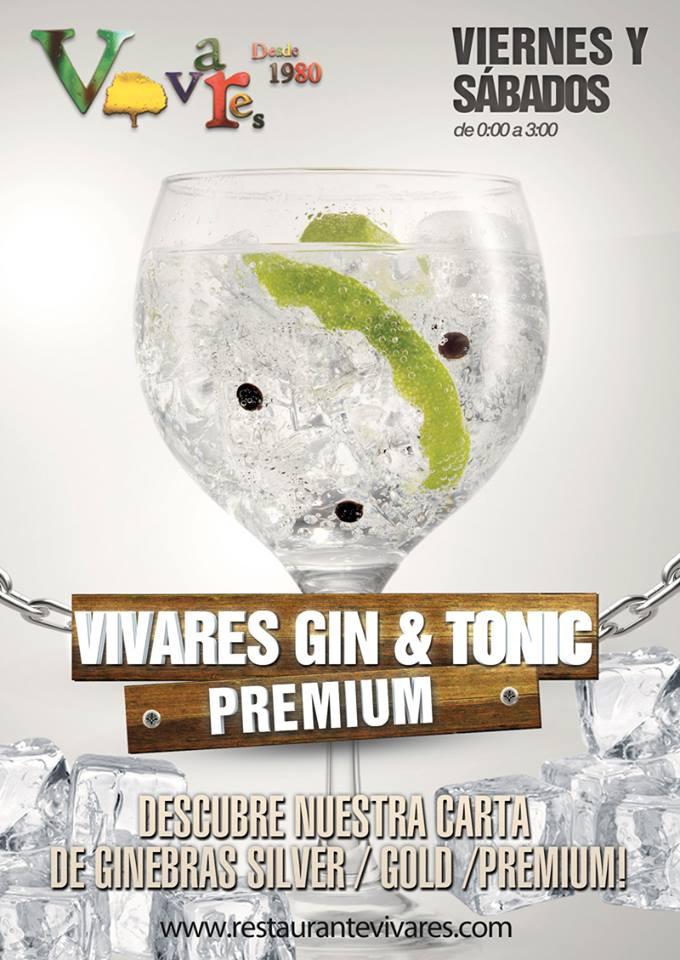 Vivares gin & tonic premium
